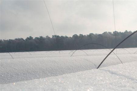 Winter Spargelhof